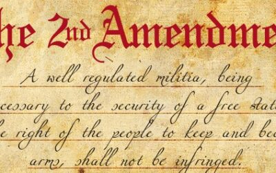 Gun Rights Lessons – A Series